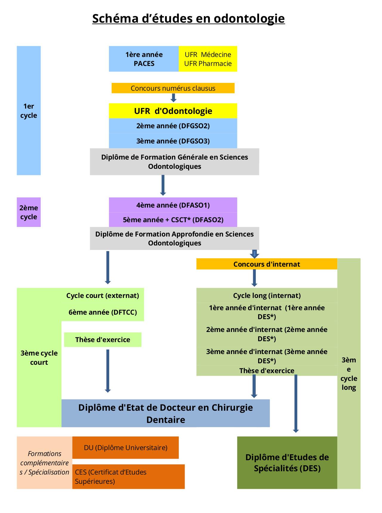 formation initiale  u2013 facult u00e9 d u0026 39 odontologie
